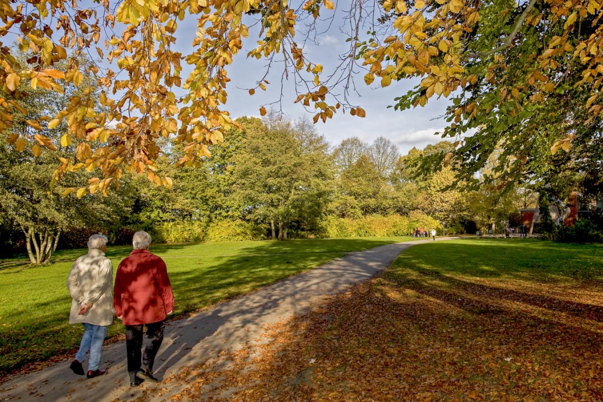 Herbstspaziergang-Credneranlagen_6808